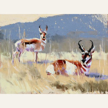 Antelope Easy Afternoon 6x8, $850 copy