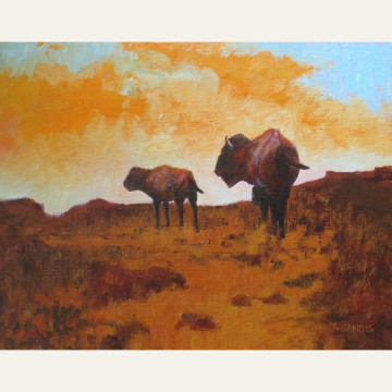 Colorado Bison 11x14 oil $2200.jpeg copy