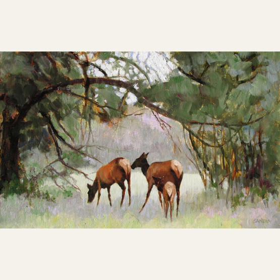 Elk Nursery 14x22 oil $3800.jpeg copy
