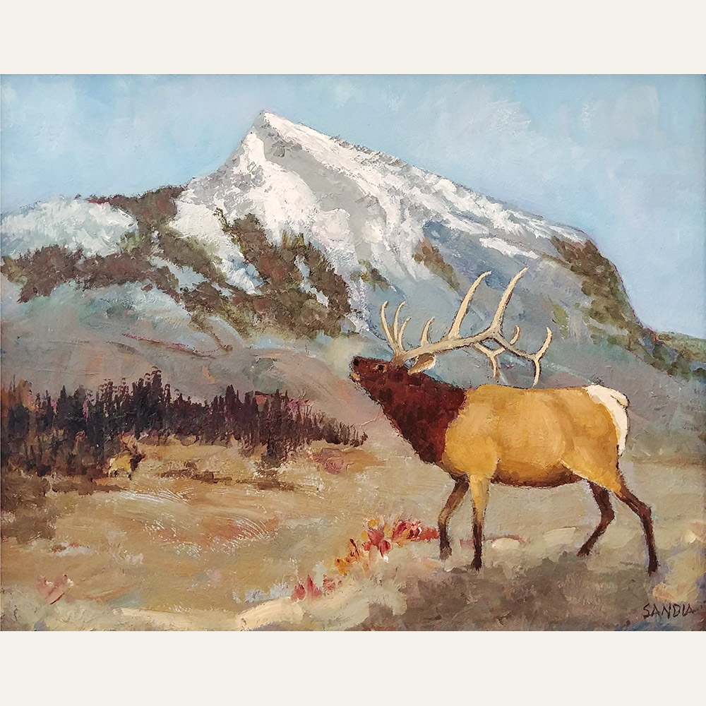 ES17-45 Mt. Crested Butte and Bull Elk 8x10 oil 1400 F WEB