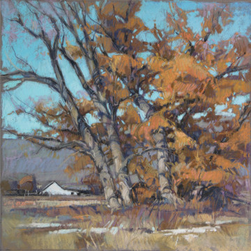 CB17-12 Cottonwood Fall 9x9 pastel 750 F WEB